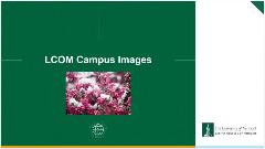 Campus Images Powerpoint Template