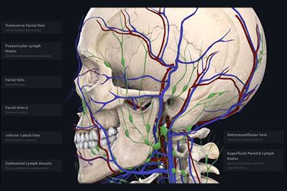 Complete-Anatomy-420x280