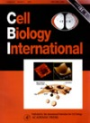 cell biology international cover