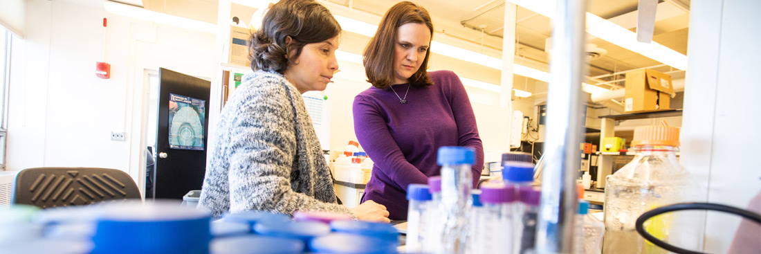 Delphine Quenet, Ph.D., and Alissa Thomas, M.D., review their work on glioblastoma in the Given Building laboratory