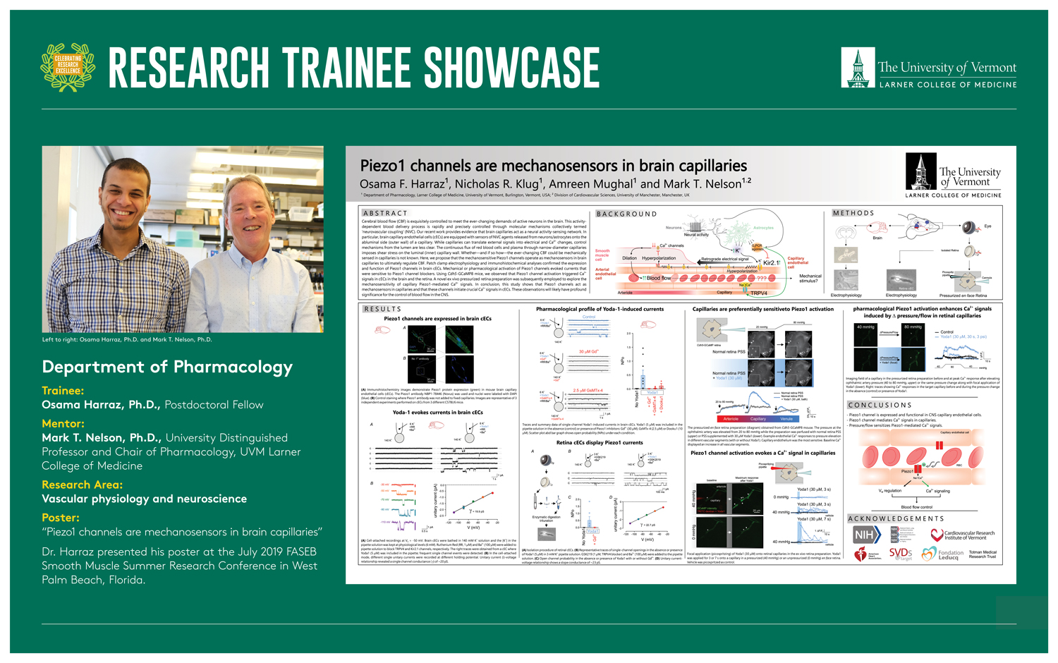 Research Trainee Showcase poster with graphics