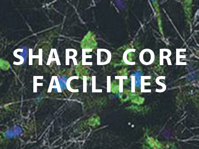 Shared Core Facilities