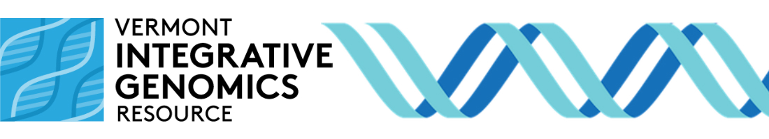 VIGR Logo and DNA Strand