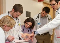 Fellowship - Division of Rheumatology and Clinical