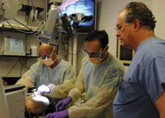 Physicians in the skull base lab