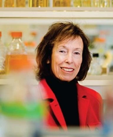 Susan Wallace, PhD Headshot